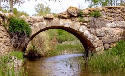puente14